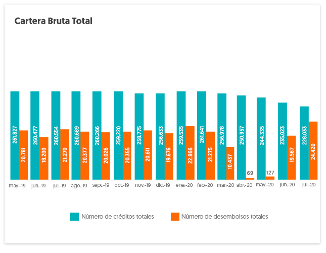 Gráfico Cartera Bruta - Información en número