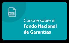 Ver Fondo Nacional de Garantías
