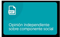 Ver PDF: Emisión Bonos 2019 -  Aviso de oferta.